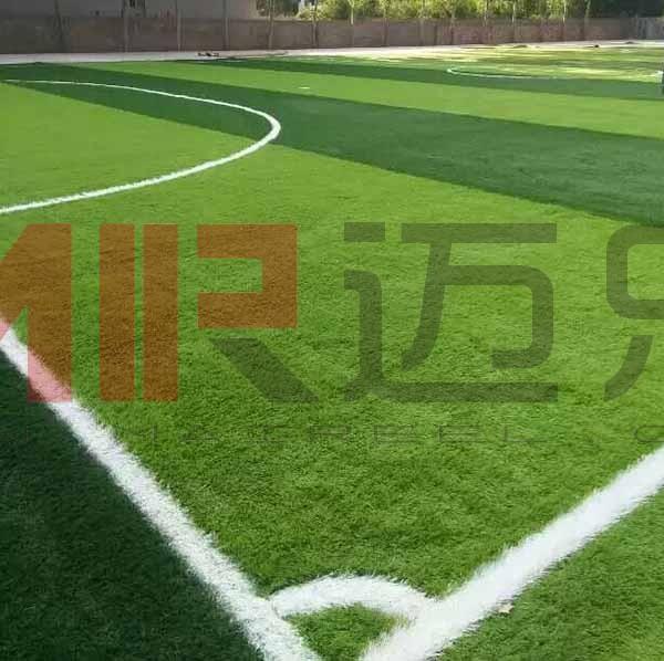 湖南小学人造草坪足球场地施工图